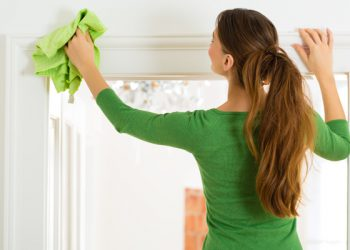 pet-and-home-care-cleaning-services-01